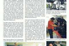 Falkenseer Stadtjournal 2011